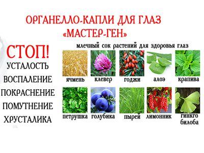 Мастер-ген (глазные капли) 10 мл «Сашера мед»